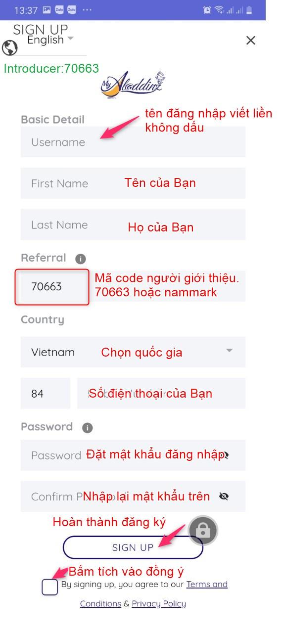 dang-ky-su-dung-myaladdinz-nammark-com-6